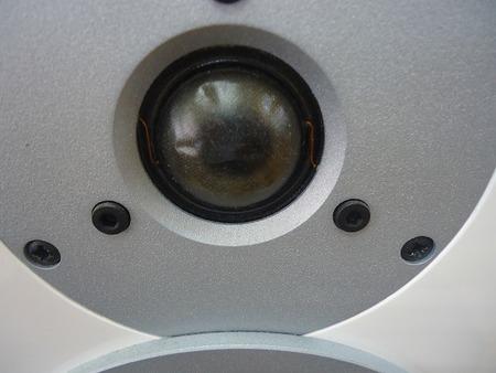 Dynaudio  スピーカー  EXITE X12